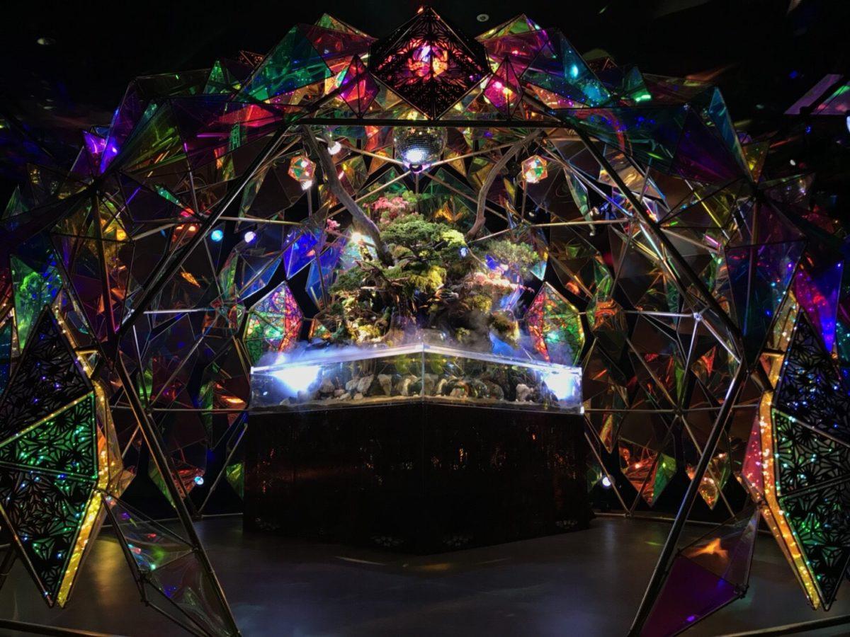 ミ・ナーラの金魚ミュージアム