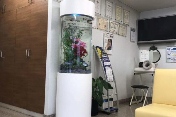 レンタル水槽・アクアリウムありま歯科クリニック