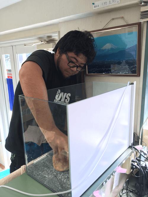 仁愛会歯科 綱島台クリニック様の水槽のリニューアル