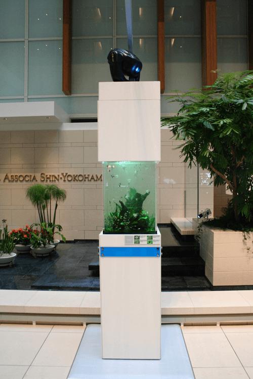 横浜キュービックプラザをアクアリウム空間に演出。